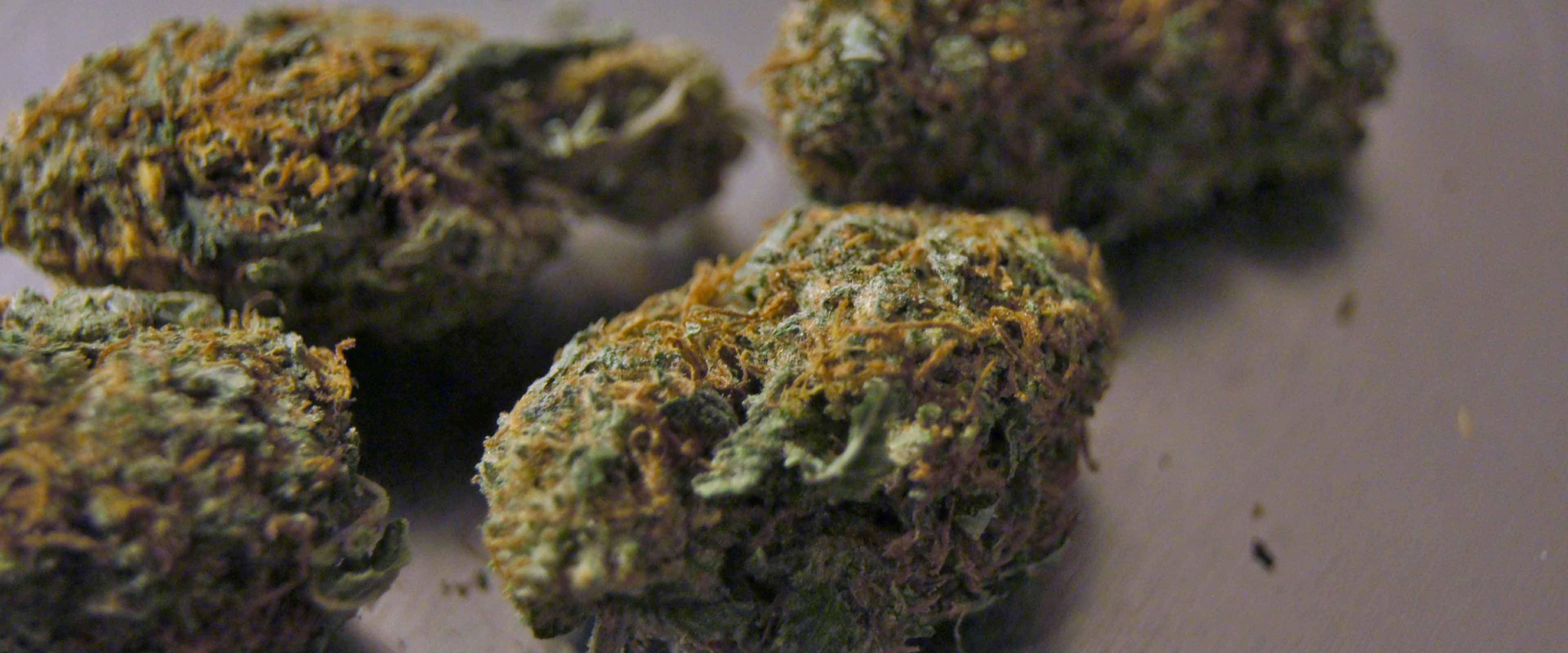 marijuana-medizin-whatshealth
